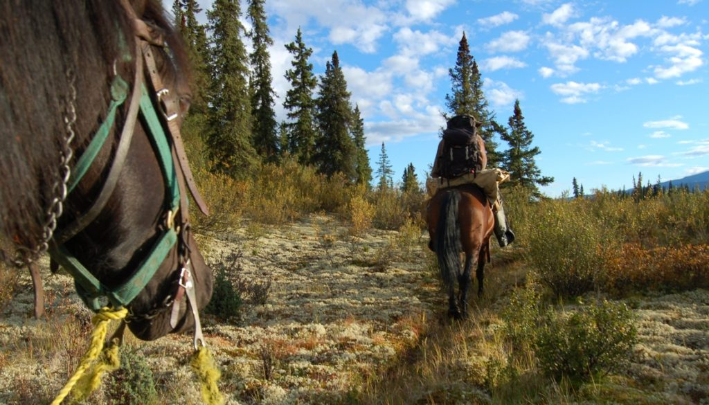 HORSEBACK IN THE YUKON